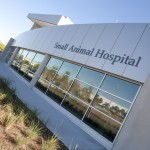 SmallAnimalHospital_0360