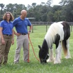 Zip the horse with Drs. Sanchez and Smith