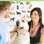Image of dog with veterinarian and owner