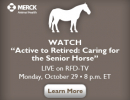 RDF-TV Senior Horses 2012