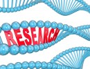 Research dna helix