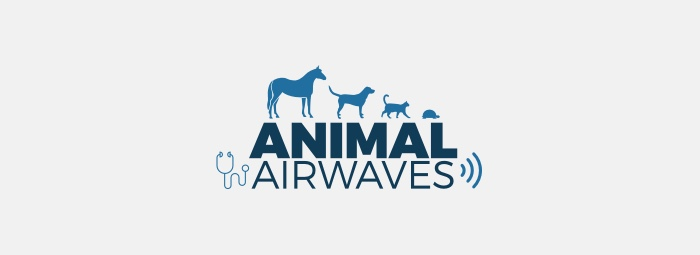 AA Live: Understanding and Treating Ear Infections in Dogs